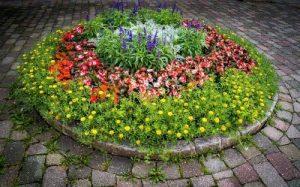 Circle Small Flower Garden