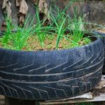 How to Get Started Growing Vegetables in Tires